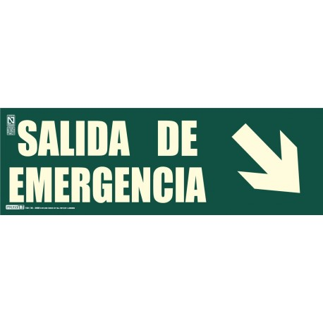 Señal Salida de emergencia + Flecha inclinada Clase B